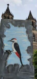 Ein gemalter Buntspecht in einem Mauerloch, Bezug zu den Mauerspechten an der innerdeutschen Grenze